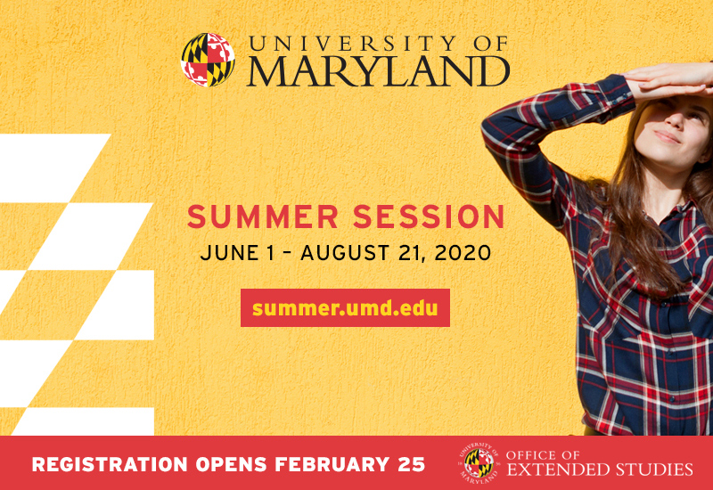 Summer Session Graphic
