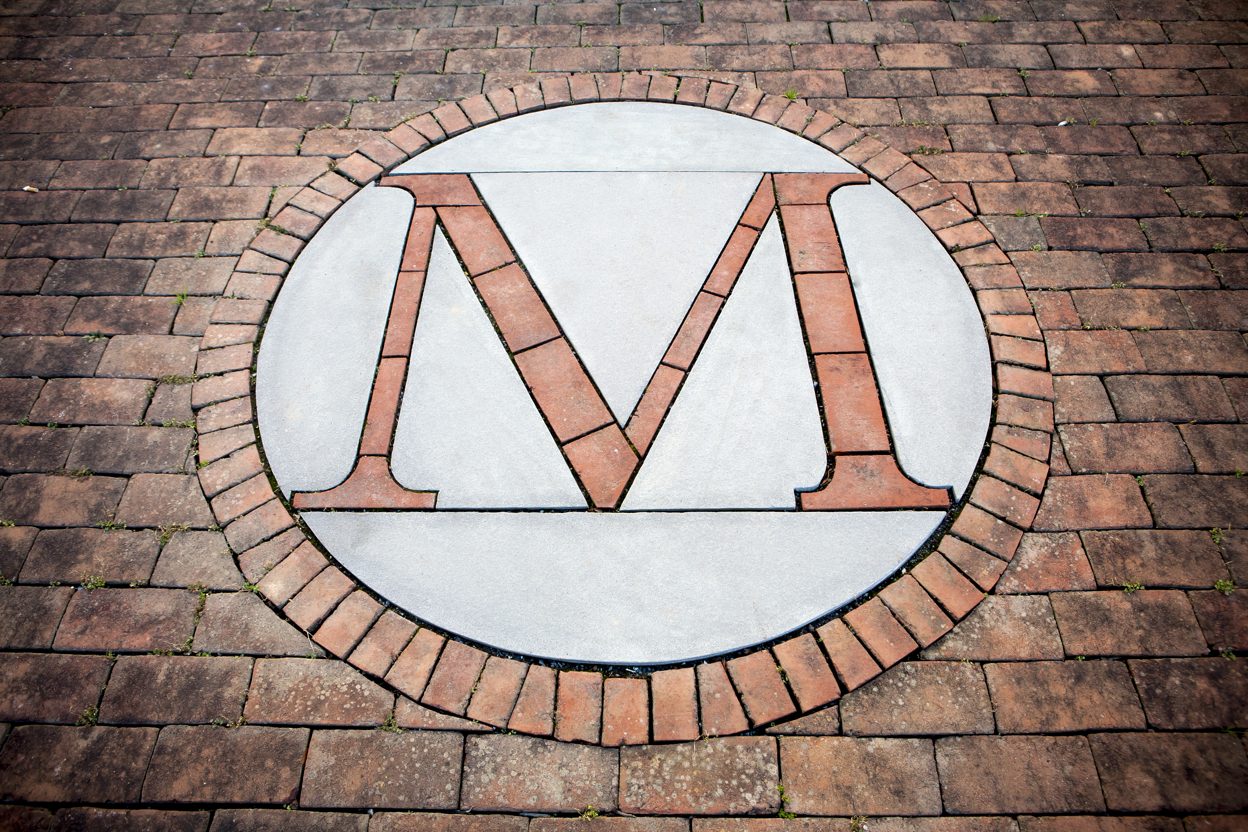 Brick M